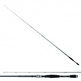 CANNE DAIWA EXCELER SPINNING
